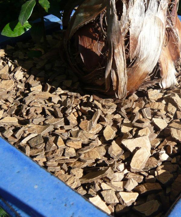 mulch de coco