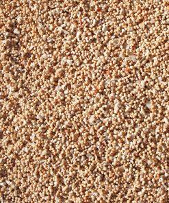 sable de corail