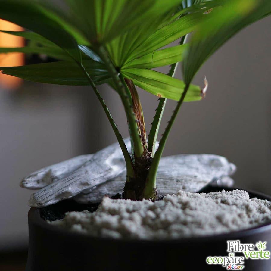 Sable de marbre dans pot