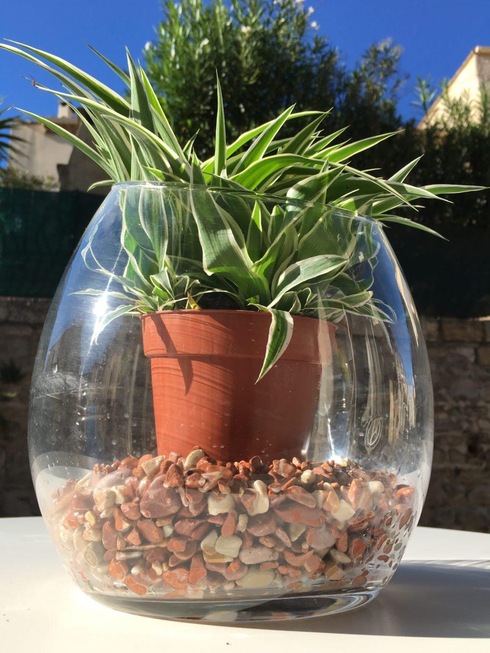 vase décoration gravier roulé
